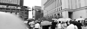 Japan Bilingual Accounting and Tax